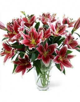 Bouquet of 51 pink lilies | Delivery and order flowers in Kostanay