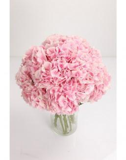 Bouquet of 51 pink hydrangeas | Delivery and order flowers in Kostanay