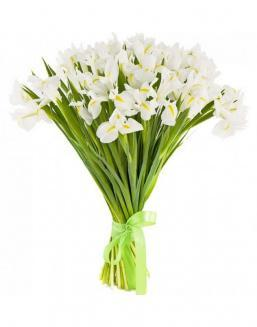 Bouquet of 25 white irises | Delivery and order flowers in Kostanay