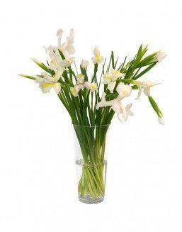 Bouquet of 15 white irises | Delivery and order flowers in Kostanay