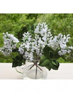 Bouquet of 25 white lilac | Roses,lilacs to mother
