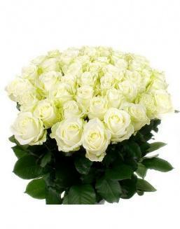Bouquet of 51 white roses | Roses to mother,to fiancee flowers