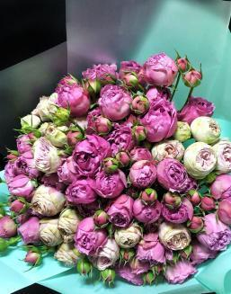 Bouquet of 15 pink spray roses | Roses to mother,to colleague flowers