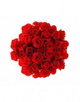 Bouquet of 25 red roses | Roses to men,to mother flowers
