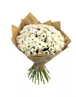 Bouquet of 25 chrysanthemums | Delivery and order flowers in Kostanay