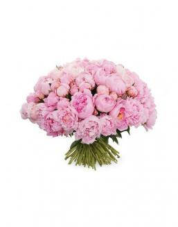 Bouquet of 101 peonies | Delivery and order flowers in Kostanay