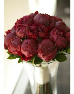 Bouquet of 15 claret peonies | Delivery and order flowers in Kostanay