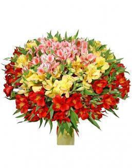 Bouquet of 15 alstroemerias | Delivery and order flowers in Kostanay