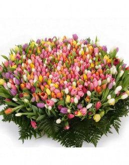 Mix bouquet 501 tulips | Delivery and order flowers in Kostanay