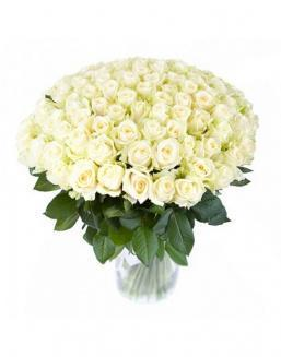 77 high elite white roses | Dutch roses,roses to mother flowers