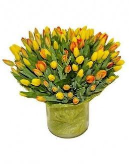 Bouquet 501 yellow tulips | Flowers to mother
