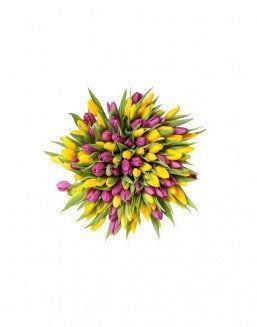 Mix bouquet 201 yellow and violet tulips | Flowers to mother